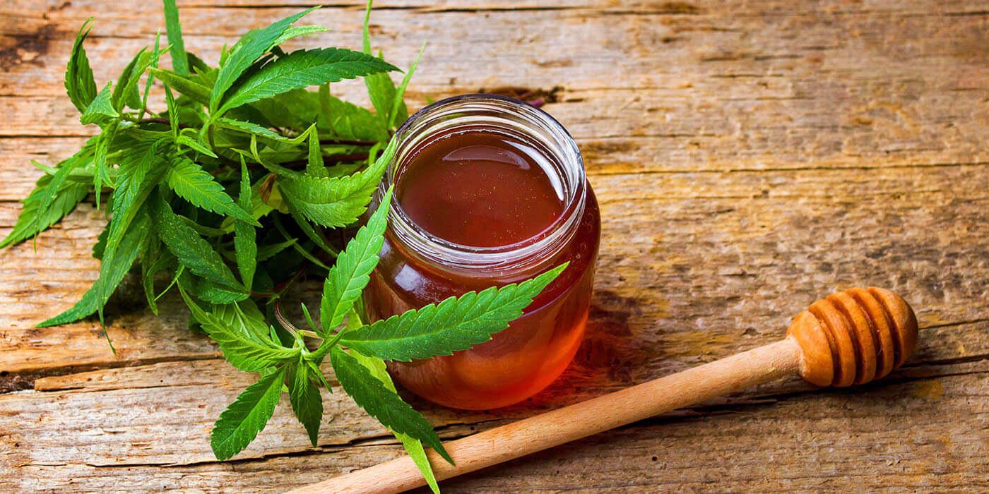CBD-Honig könnte das ultimative Heilungs-Kraftpaket für viele Leiden sein